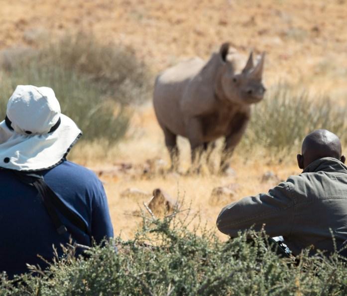 Desert Rhino Camp in Damaraland, Namibia