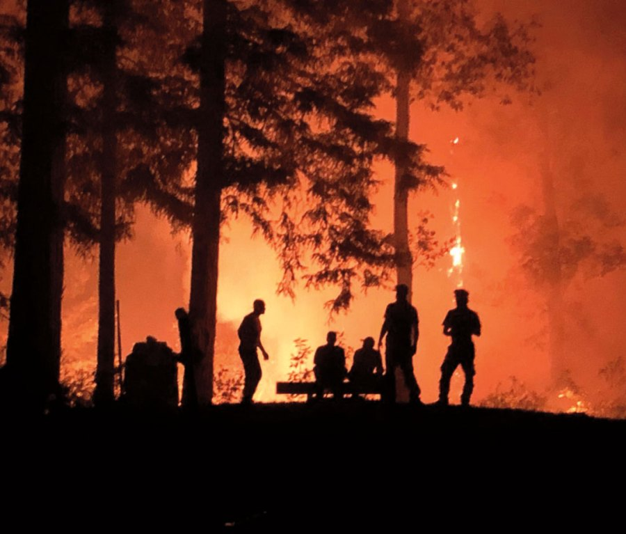 Wildfire raving forested area of California