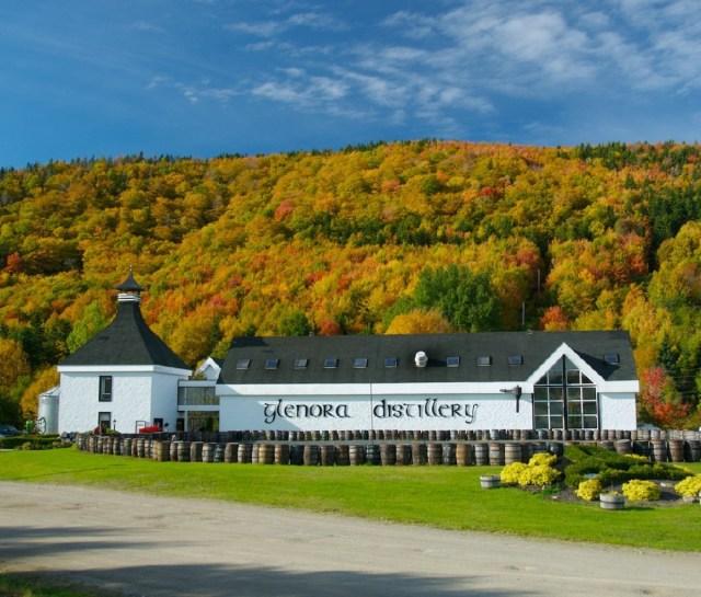 De Glenora-distilleerderij, een lang wit gebouw omringd door vaten, met een heuvel bedekt met herfstgebladerte op de achtergrond.