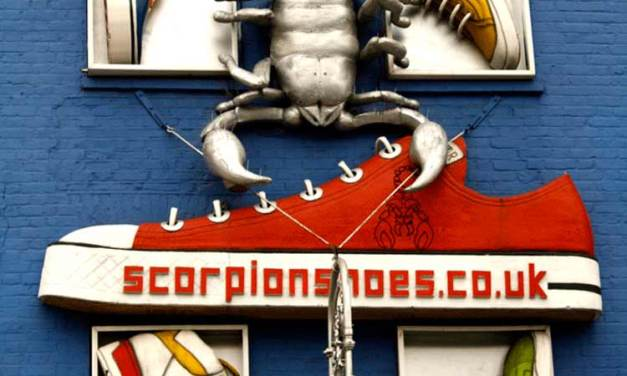 Camden Lock – Scorpion Shoes That Are Savvy In Style
