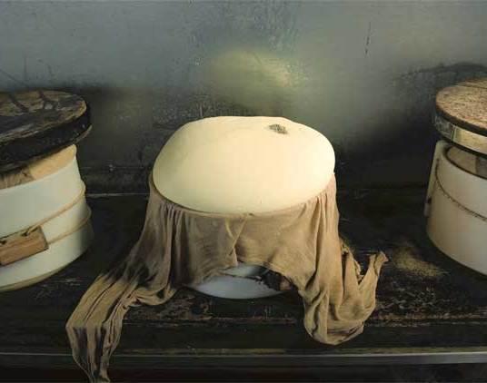 parmigiano-reggiano-2