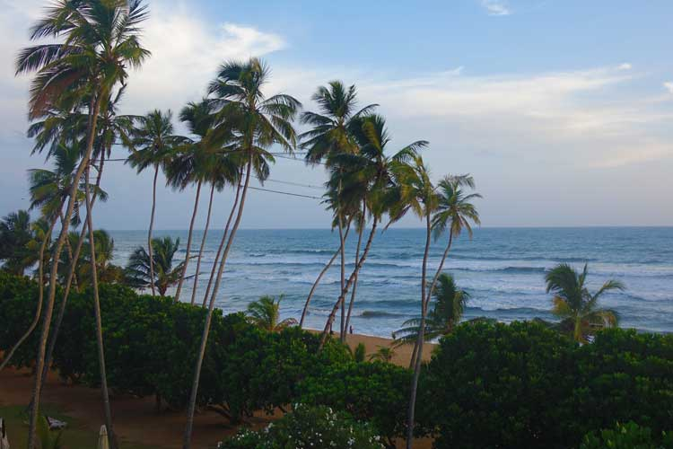 Turyaa Kalutara Sri Lanka Hotel Review - Family Fun In The Sun