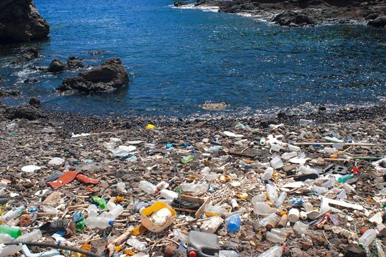 Plastic Bottle – Stop Drinking Your Plastic