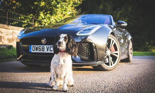 Jaguar F-Type SVR  – Convertible Lifestyle Review