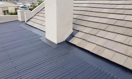 Is Your Roof In Santa Rosa Algae Resistant Or Not?