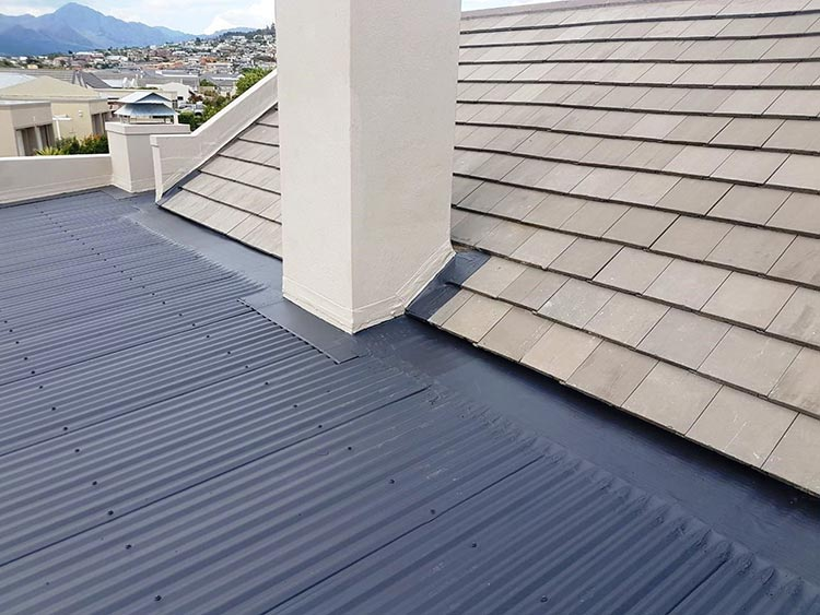 Is Your Roof In Santa Rosa Algae Resistant Or Not?
