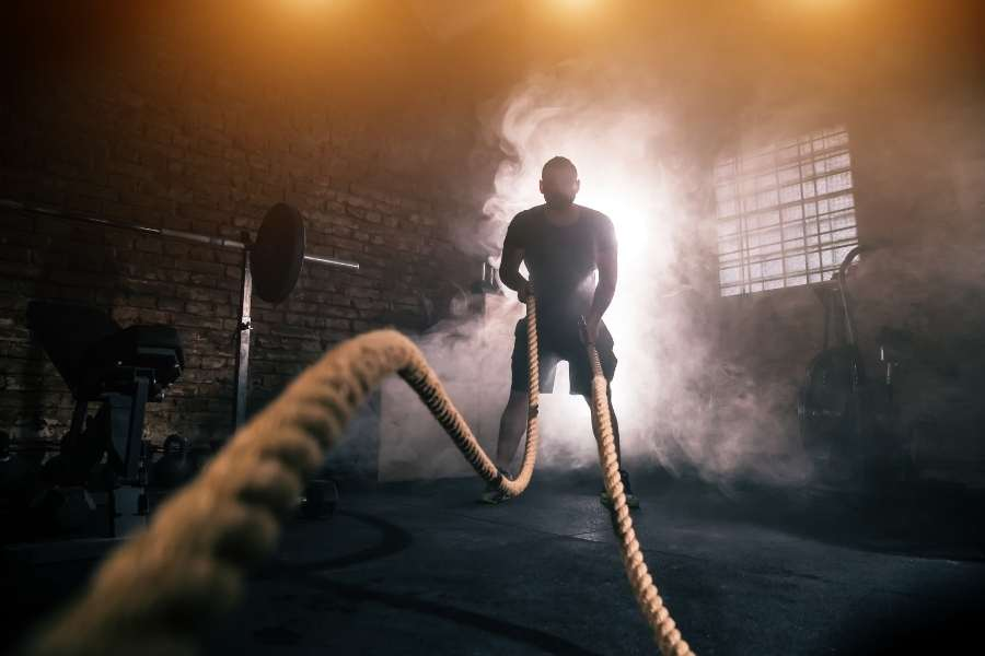 workout ropes