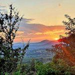 Fattoria Mansi Bernardini - Villa Casa Maria Reviewed Italy Tuscany 2020 (4)