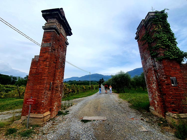 Fattoria Mansi Bernardini - Villa Estate Lucca Tuscany (1)