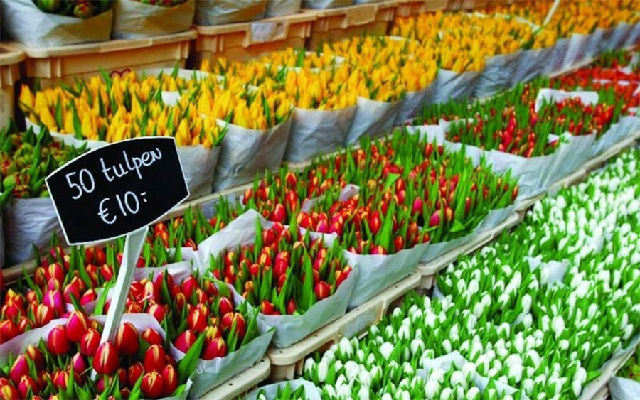 flowers sold on market stand