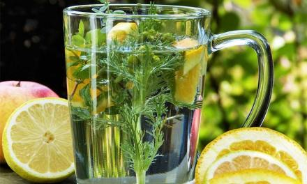 How to Boost Your Immune System This Winter?