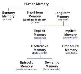 Figure 5.3 Memory Types. Sensory, Short-term, Long-term. More description in memory link