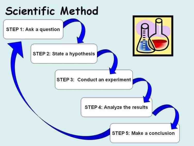 Figure 23.2 Scientific method steps