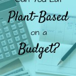 Check book, calculator and money on a table with text overlay - Can you eat plant-based on a budget.