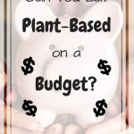 Piggy bank with overlay text - Can you eat plant-based on a budget?