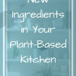 Kitchen shelves with text overlay - New ingredients in your plant-based kitchen