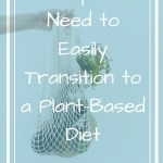 Arm holding mesh bag of produce with overlay text - The tips you need to easily transition to a plant-based diet