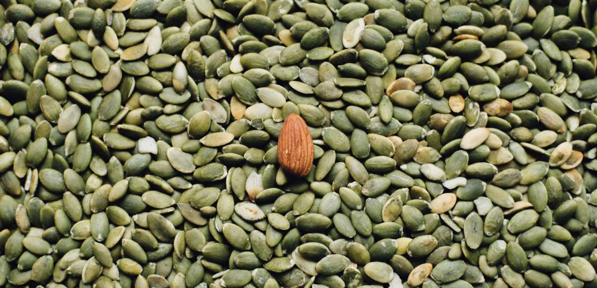 plant-based iron sources