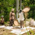 Am anderen Ende des Feldes wird dann noch mal alles aussortiert, was nicht Reis ist. Dann wird gesiebt und abschließend in Säcke gefüllt - fertig zum Transport.