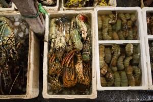 Natürlich gibt es auf dem berühmtesten Fischmarkt Balis nicht nur Fisch. Sondern auch allerlei anderes Getier.