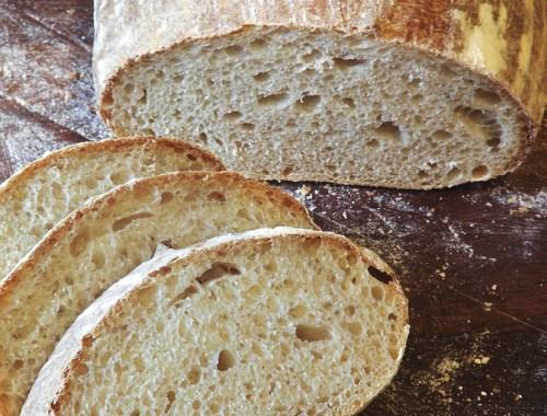 paine cu maia reteta