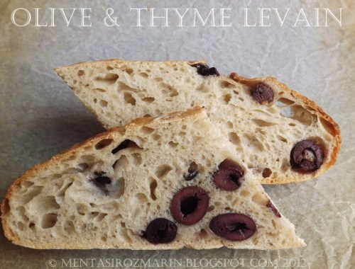 olive levain sectiune