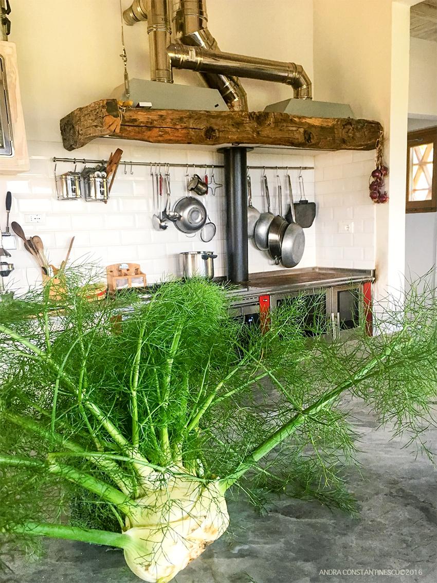 toscana explorari culinare