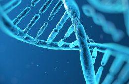 ADN conciencia emocion coherente