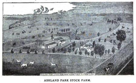ashland stock farm
