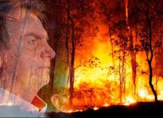 O Partido Rede pede que STF obrigue Bolsonaro a elaborar plano contra incêndios