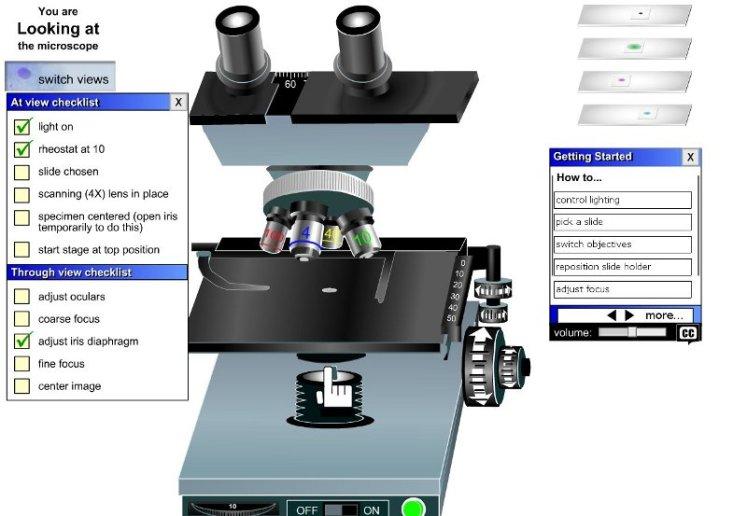 simulador microscopio