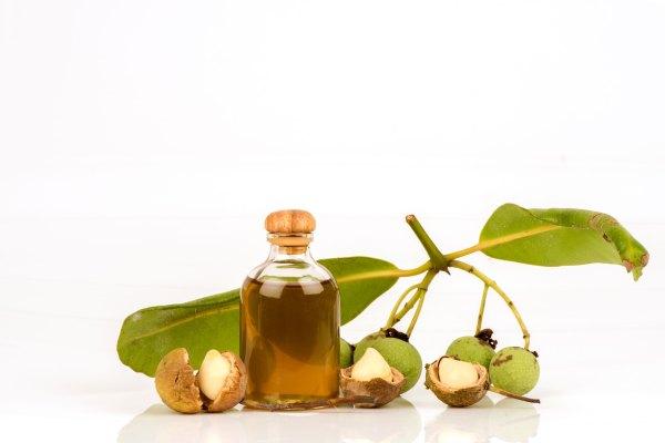huile de calophyllum