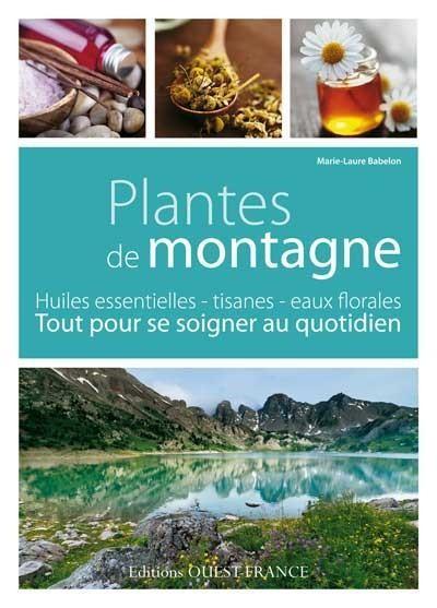 plantes de montagne cassis