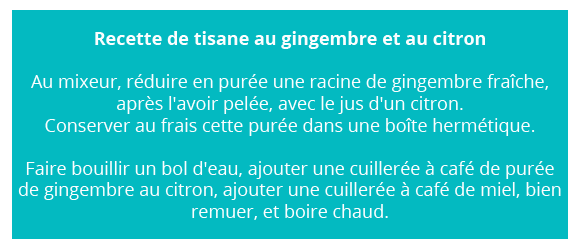 bienfaits du gingembre
