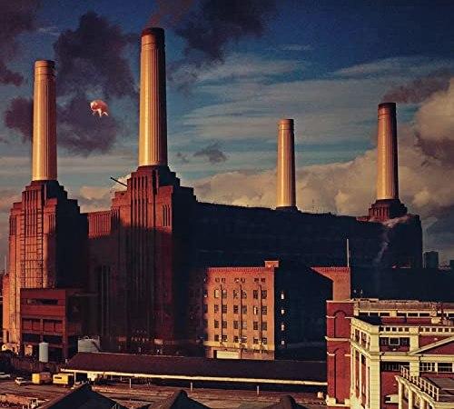 Da Giordano Bruno a George Orwell: Animals, il manifesto politico dei Pink Floyd