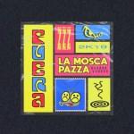 """""""La mosca pazza"""": ecco il nuovo singolo dei FUERA"""