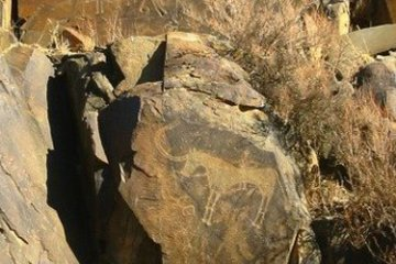 Petroglyphs of Tamgaly