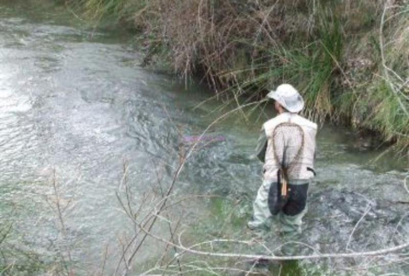 Cotos intensivos de pesca