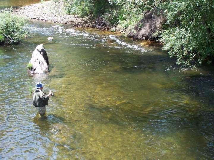 Pescar en Palencia truchas