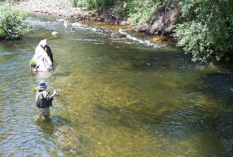 Pescar en Palencia, el refugio olvidado de la trucha