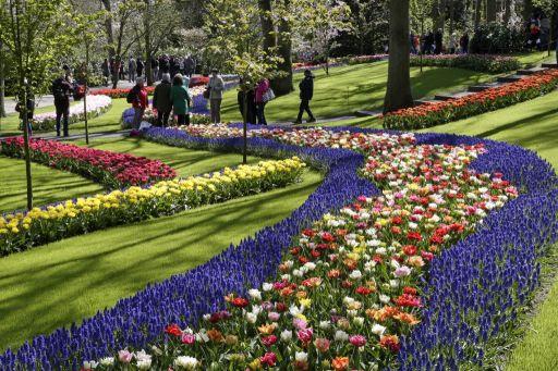 KLM lança série especial ?Holanda em casa? com vídeos em 8D; confira