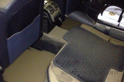 Mercedes-alluvionata-381