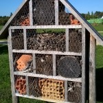 nichoir insectes