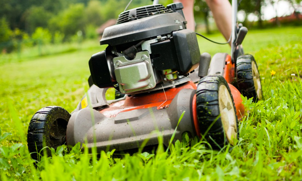 Entretien du jardin mercier paysage paysagiste for Entretien jardin emploi