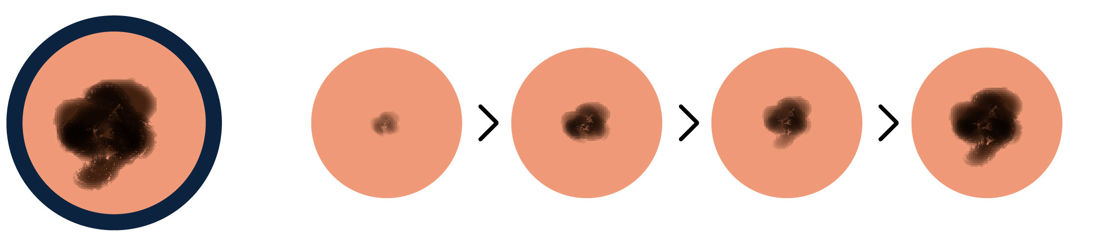 Illustration of evolving