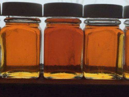 maple syrup jars