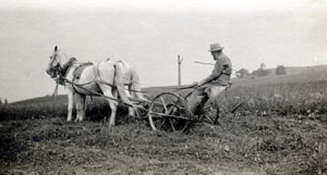 history of VT farms