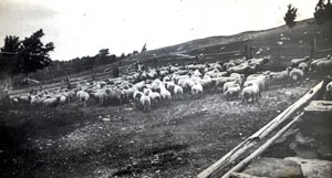 farm-history4x