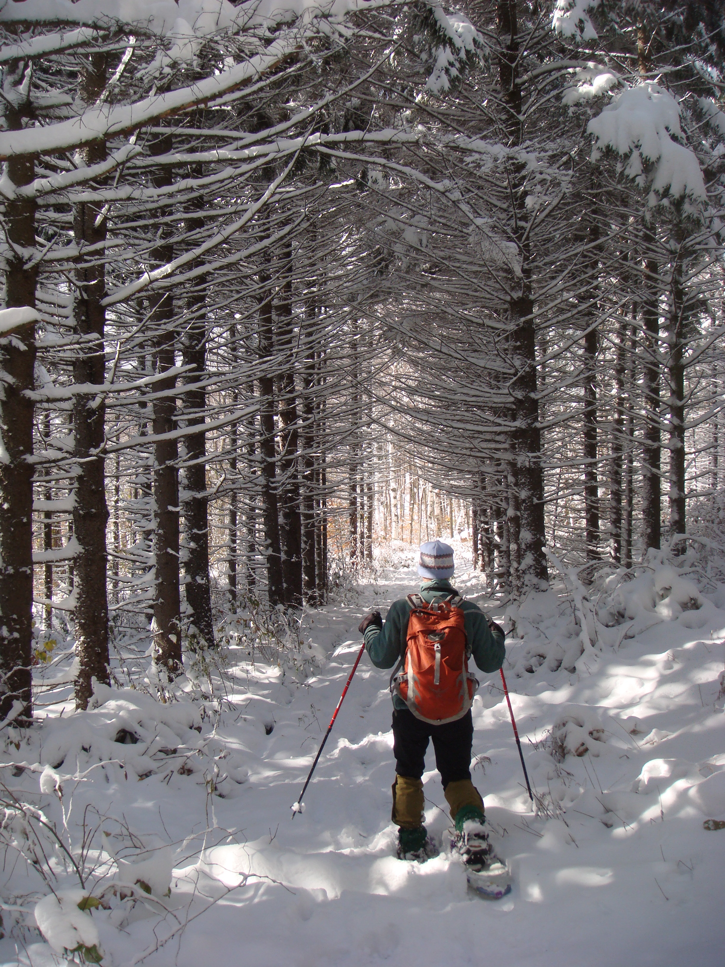 winter, snow, Vermont, snowshoeing