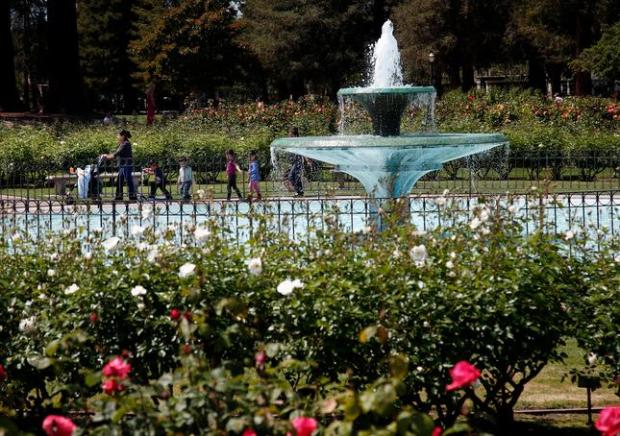 Hot temperatures lure families out to the Municipal Rose Garden, Wednesday afternoon, April 6, 2016, in San Jose, Calif. (Karl Mondon/Bay Area News Group)